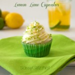 The Cupcake Project: Lemon Lime Cupcakes Homemade Cupcake Recipe