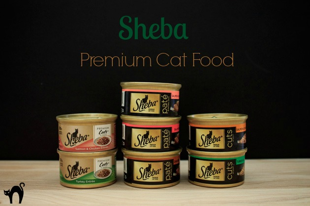 Cat Health Sheba Cat Food #shop | Sassy Girlz Blog