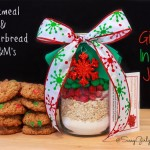 DIY Gifts In A Jar – Gingerbread M&M's and Oatmeal Cookie Mix