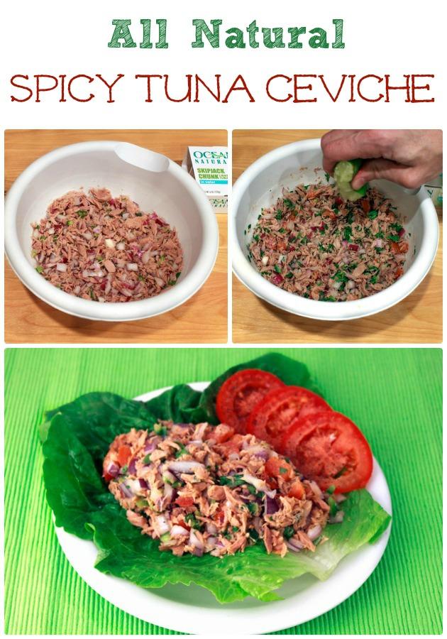 Tuna Salad Spicy Tuna Ceviche |Sassy Girlz Blog #shop