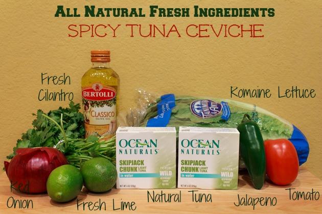 Tuna Salad Spicy Tuna Ceviche | Sassy Girlz Blog