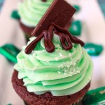 Andes Mint Chocolate Cupcakes – The Cupcake Project